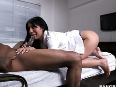 With juicy a-hole and her hot bang buddy both enjoy blowjob session