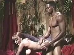 Jungle get laid
